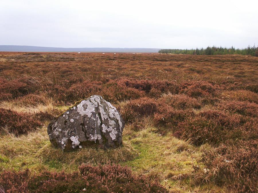 lowercamsterstones01.jpg