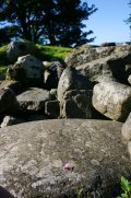 Stones around the cist on the top of the cairn.