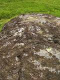 The cup-marked stone.  The cupmark is hard to see here, but is dead centre of the picture.  At the centre of the right edge is the more obvious drill hole.