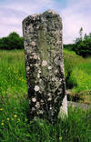 A closer view of the other side of the cross slab.  Carvings of the cross, birds and animals can be faintly seen.