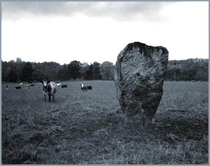 Danes Stone, looking east