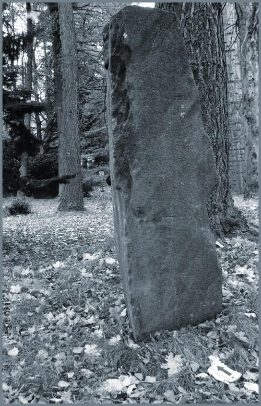 Balnakeilly stone looking northeast - north is indicated by the arrow at the base of the stone.