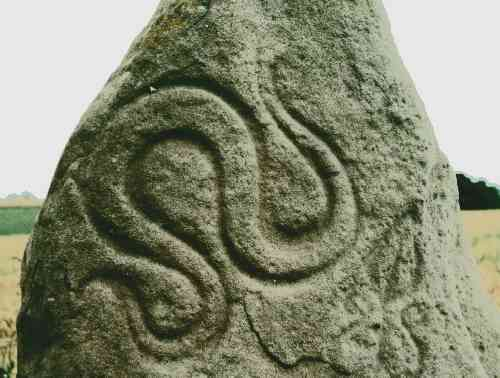 Detail of the serpent symbol.