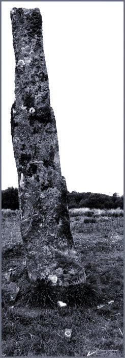 The south face of the monolith.  The compass at the bottom centre of the picture indicates north up and slightly right.  A cup mark can be seen about one quarter of the way up the stone at the right-hand edge.