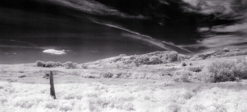 View to the north in infra red.