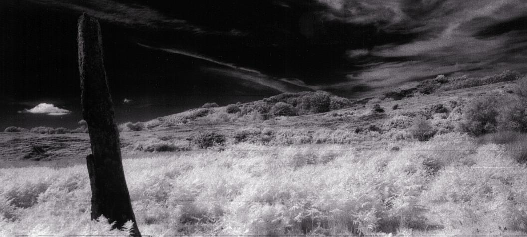 A closer view to the north.  Using infra red film again.