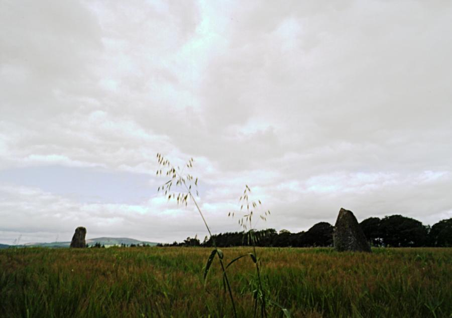 The pari of stones, looking west.  The nearby recumbent stone circle is at the far end of the field, between the two stones.