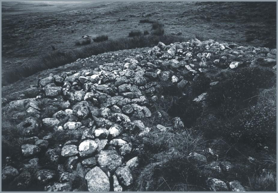 The top of the cairn.  The dark area at the centre-right and lower-right of the picture is a depression from where stone has been robbed.  It reaches down to a cist within the body of the cairn.