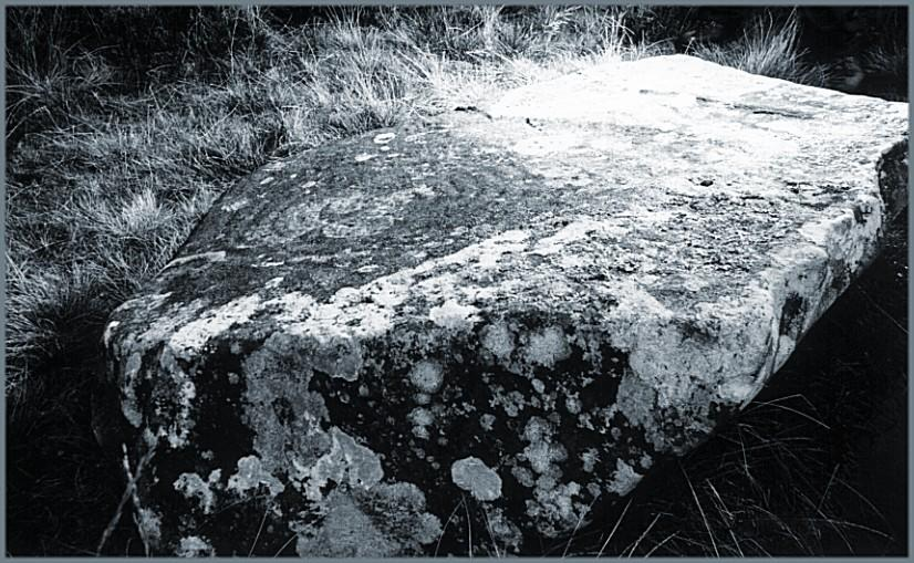 Across Cauldside Burn and partway up the slope of Cambret Hill is this large boulder with a single cup-and-ring mark.  There are at least eight rings around the cup mark reaching a couple of feet in diameter.  The carving is heavily weathered and hard to see, hence the awkward angle in the photograph, to catch the light.