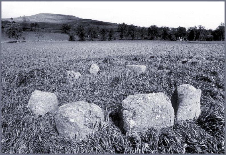 Looking east across the circle.  The three larger stones nearest the camera have been likened to the recumbent and flankers of recumbent stone circles.