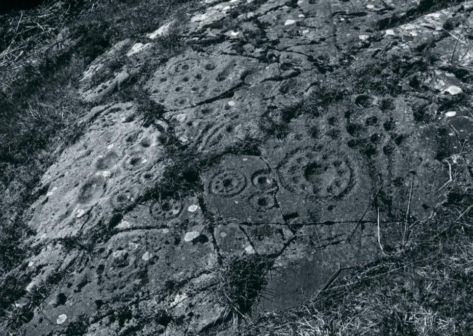 "A closer view of the ""rosette"" rock sheet"