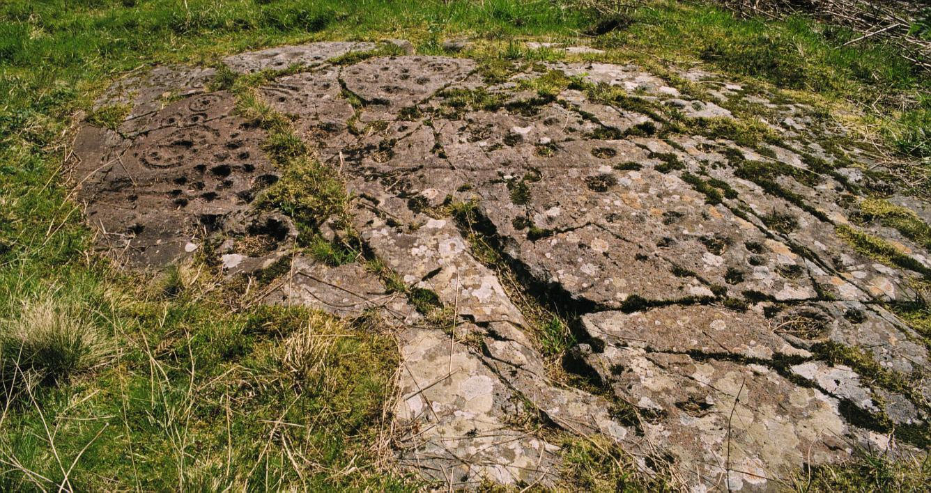 "The ""rosette"" rock sheet"