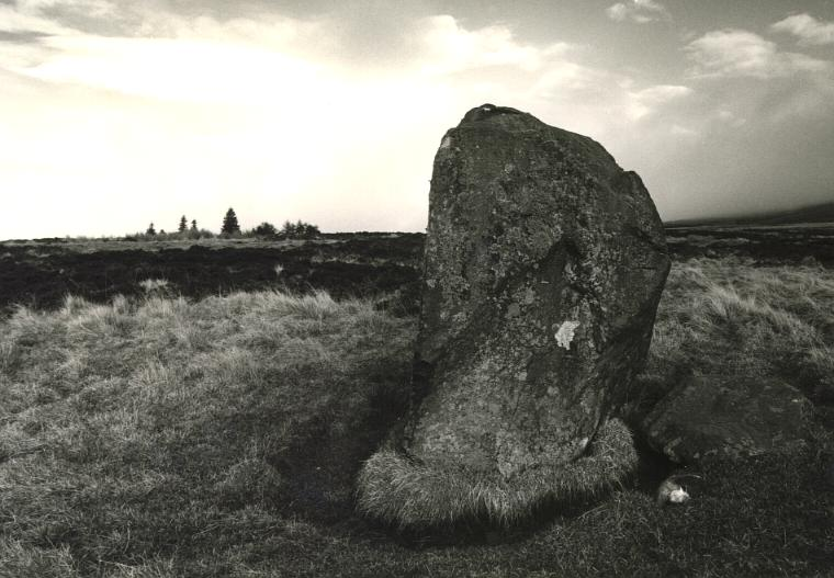 The Wallace stone, looking northeast.