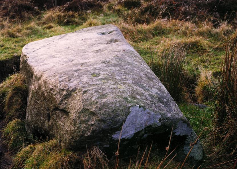 A view of the southernmost stone showing some of the cup marks in the upper surface.