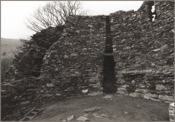 The inner wall and courtyard. The entrance to the broch is at the bottom of the steps in the lower-left corner