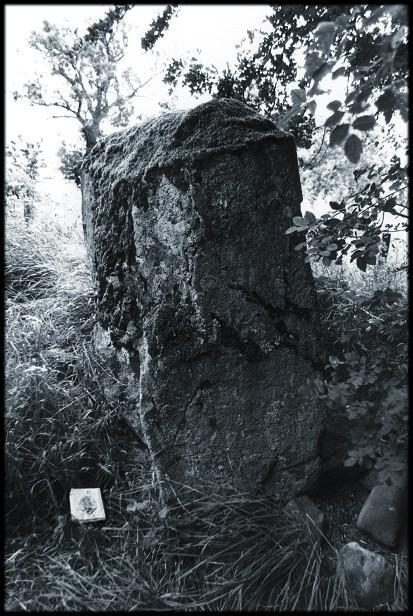 The western stone.  The arrow indicates north to the bottom of the picture.  This is the narrow edge - the wide face is five feet across.